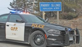 A Parry Sound man faces 19 fraud charges after a lost credit card was misused