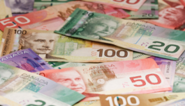 Breaking court decision: Abid Okadia, 63, of OK Tax Services, in Toronto found Liable for Fraud