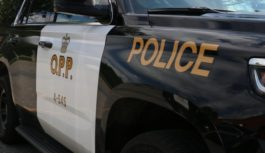 Marathon OPP charge 25-year-old man with fraud in single car collision